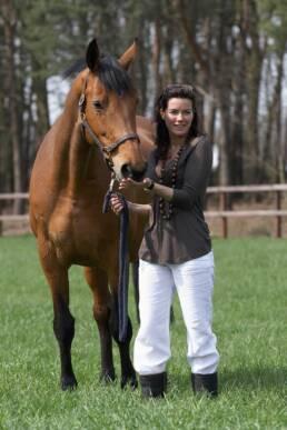 Het Haarbosch, privé-stallen voor dressuurpaarden